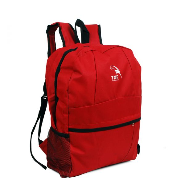 Tnf Backpack at Rs.249