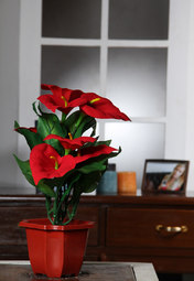 Truhome Artificial Flower at Rs.479