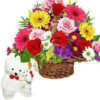 Cute Teddy & Basket of 24 Flower at Rs.995