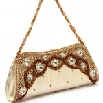 Women's Clutch at Rs.850