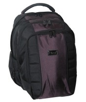 F-Gear Carlton Laptop Backpack at Rs.1605
