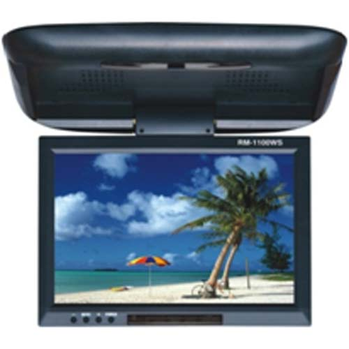 Buy Car Roof Mount Monitor at Rs.2999